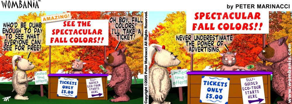 Autumn Eco Tour