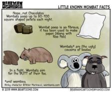Wombat Cartoon by Bearman