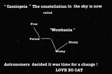 The Wombania Constellation by Cat Forsley