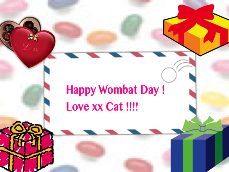 Wombat Day Card by Cat Forsley