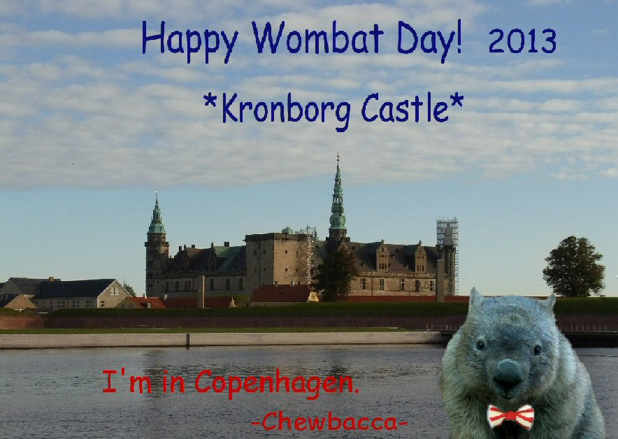 Wombat Day 2013 by Chieko