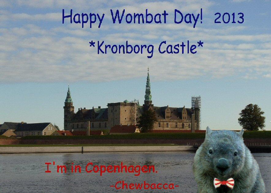 Wombat Day 2013 by Chieko