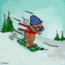 Skiing Fraz by Debbie Adams