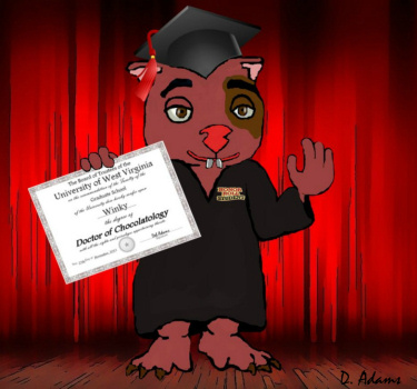 Winky's Chocolatology Degree by Debbie Adams