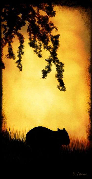 Wombat Silhouette by Debbie Adams