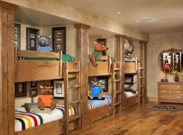 Adopted Wombies' Bedroom Bunk Beds by Debbie Adams