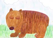 Wombat by Jenny Day