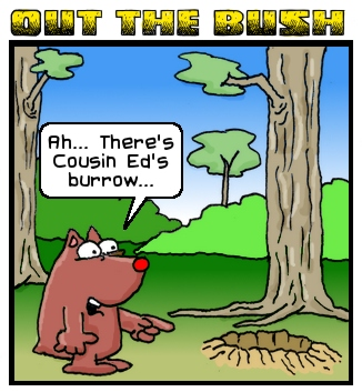 Winky's Burrow Adventure by Tony McGurk