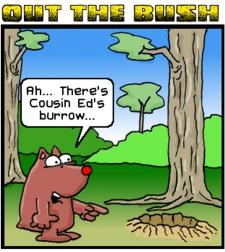 Winky's Burrow Adventure by Tony McGurk