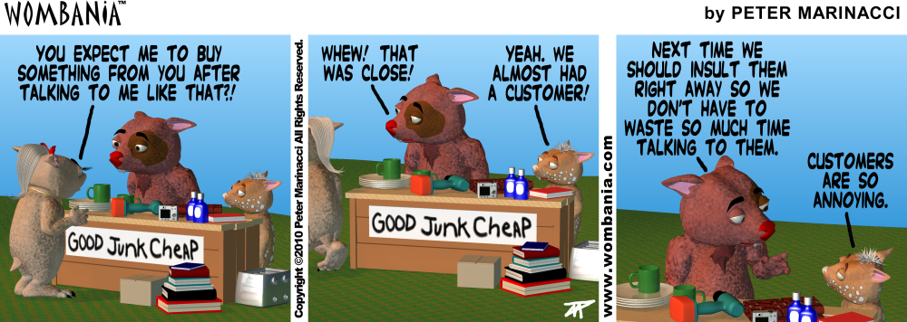 Insulting Customers